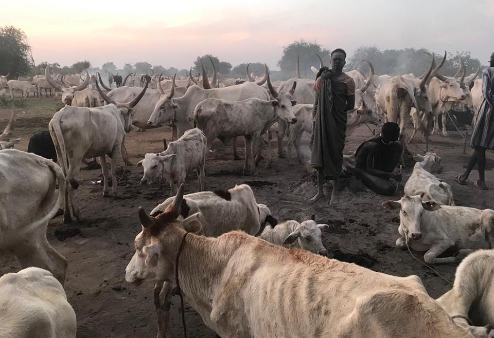 Viaje Trekking y Aventura a Sudan del Sur con Jose Antonio Masiá